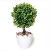 Arbolito de hoja lanceolada verde. Todos nuestros modelos aquí https://www.aw-regalos.com/ares