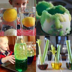Kid-friendly science fair project ideas.