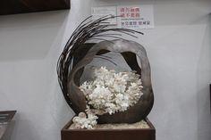 세계조가비 박물관  수천점의  조개를  전세계에서 모으신 관장님 조가비 작품을 동작가와 콜라보레이션 한 작품