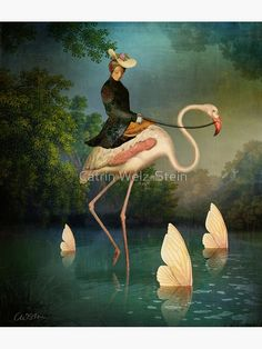 Canvas Wall Art, Canvas Prints, Flamingo Art, Pink Flamingos, Art Et Illustration, Whimsical Art, Surreal Art, Fine Art Paper, Collage Art