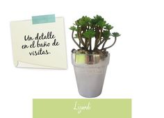 Arreglos florales:Siempre busca generar entornos agradables, sea el espacio que sea.