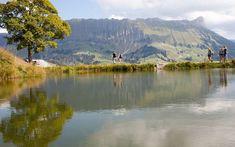 Wanderplausch und Biergenuss - Born Reisen AG Mountains, Nature, Travel, Walking Paths, Group Tours, Types Of Animals, Brewery, Hiking, Beer