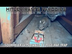 Squirreler gets owned by Fegelrat Trap - YouTube