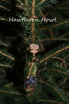 Yule in the Air Ornament by HawthornHowl on Etsy, juniper berries, bay leaves, cloves, pine