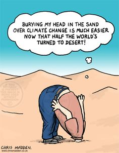Burying my head in the sand