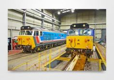 Class 50 50026 and 50017 Inside Kidderminster Shed Wall Art Print - Digital Painting featuring class 50 50026 Indomitable and 50017 Royal Oak standing inside the diesel shed at Kidderminster.
