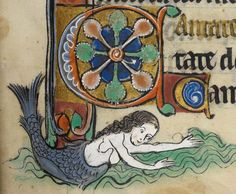 mermaid illustrative