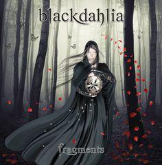 Blachdahlia Cover