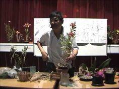 Curso básico de cultivo de Orquídeas - Parte 5