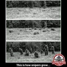 Military Humor, Military Police, Army, Airsoft Sniper, Airsoft Guns, Funny Pics, Funny Pictures, Snipers, Special Forces