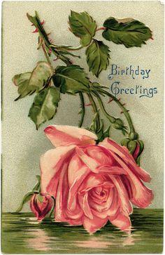 Victorian postcard graphics, vintage birthday postcard, pink rose clip art, old fashioned birthday card, vintage flower illustration