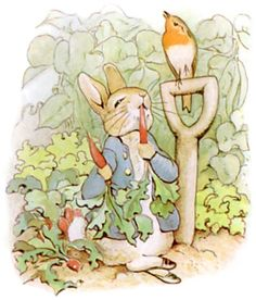 Truth be known, Mrs. Rabbit's garden was planted with seeds harvested by Peter Rabbit, which he procured on one of his mysterious o...