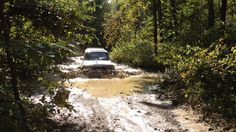 1997 Toyota Land Cruiser fording 3 feet of water in Daniel Boone National Forrest Kentucky. Land Cruiser 80, Toyota Land Cruiser, Offroad, Kentucky, 4x4, Trail, Water, Gripe Water, Off Road