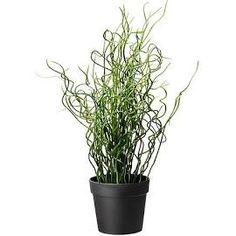 IKEA Black Fejka Artificial potted plant, Size: 10 cm