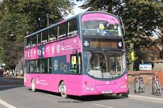 European Pink Sightseing Bus