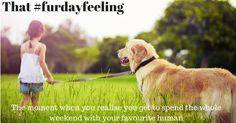 #furdayfeeling #friday - that ah ha moment! Have you had yours today?
