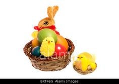 Royalty free stock photography at Alamy: Easter basket with colored eggs, bunny and chickens isolated on white background.