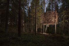 TREEHOTEL, Harads – Sweden