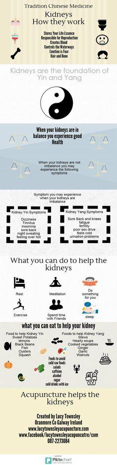 Kidneys TCM