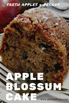 An Apple Blossom Cake is a raw apple cake with apples, pecans, and cinnamon. T… An Apple Blossom Cake is a raw apple cake with apples, pecans, and cinnamon. This Apple Bundt Cake is our go-to recipe for brunch or just coffee with friends. Apple Bundt Cake Recipes, Dessert Recipes, Desserts, Apple Pecan Cake Recipe, Fresh Apple Cake, Apple Cakes, Fresh Apples, Cookie Recipes, Mini Cakes