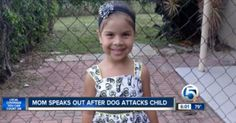 Pit Bull Hero Saves Little Girl from Dog Attack
