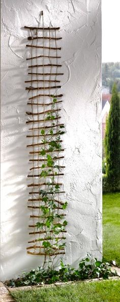 Hemp cord and stick trellis