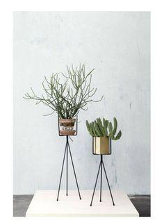 Planten standaard zwart van ferm LIVING koopt je online bij DEENS.nl. De online shop voor je woonkamer inrichting.