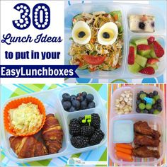 BentoLunch.net - What's for lunch at our house: 30 Lunch Ideas to Put in Your EasyLunchboxes