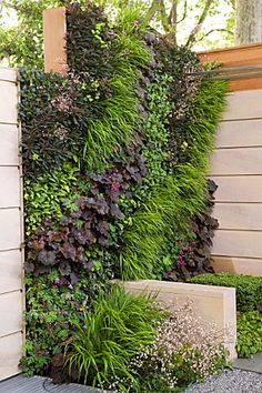 Living wall vertical garden designed by Ian Dexter, Sponsor Marshalls PLC I like the movement in the design. Modern Front Yard, Front Yard Design, Landscape Design, Garden Design, Garden Spaces, Dream Garden, Big Garden, Easy Garden, Garden Projects