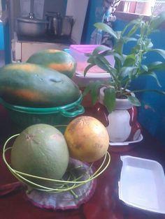 Citrus (suha/pomelo and biyasong/ bisbis) and red lady papaya.