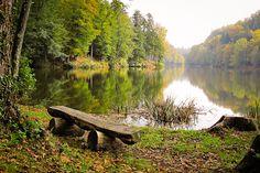 Peace beside still waters.