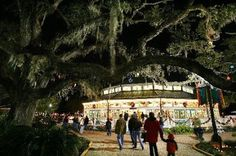 disegno Karina Gentinetta: City Park Carousel - Another Christmas in New Orleans