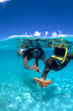 Startling clear waters are perfect for snorkling. (Photo Courtesy of U. Virgin Islands Departement of Tourism) Caribbean Honeymoon, Honeymoon Places, Surf, Dream Vacations, Vacation Spots, Places To Travel, Places To Go, Us Virgin Islands, Snorkelling