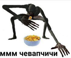 Cartoon Memes, Cat Memes, Dankest Memes, Stupid Cat, Stupid Funny Memes, Stupid Pictures, Funny Pictures, Hello Memes, Response Memes