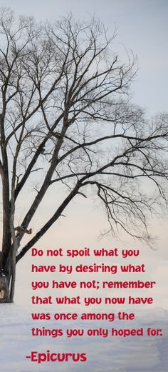 ► Do not spoil what you have by desiring what you have not; remember that what you now have was once among the things you only hoped for. -Epicurus  #quote #quotes #inspirational