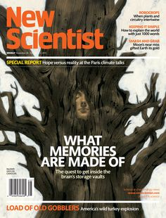 Memories are not just about the past: they are what thought and self are made of. <b>Clare Wilson</b> visits the brain's vaults to find out how they actually work