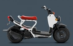 One day I WILL own a heavily mod'd Honda Ruckus/Zoomer...