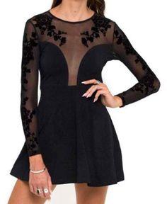 Black Sheer Mesh Long Sleeve Skater Dress