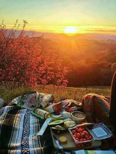 Picnic on a hillside