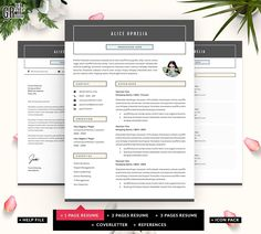 sollicitatiebrief freelancer CV sjabloon 3 pagina CV Template sollicitatiebrief voor MS  sollicitatiebrief freelancer