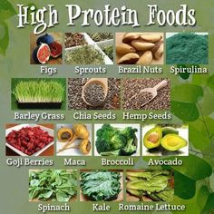 High Protein Foods From Non-Meat Sources!  It's A Healthy Choice To include In Lieu Of Meat.  #protein