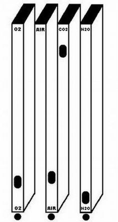 Wonderful Optical Illusions That Will Blow Your Mind   Cool Pictures