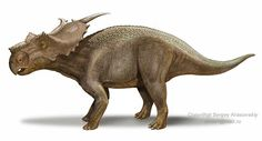 Achelousaurus; Late Cretaceous; Discovered by Sampson, 1995