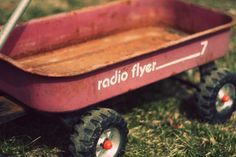 Radio Flyer wagon: a staple for every kid...loved my wagon.