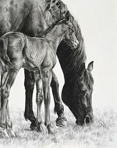 art by Karmel Timmons - Wild Foal Standing Close to His Mama as She Quietly Grazes II.