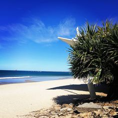 Take me back  . . . . #sunshine #beach #beachlife #traveler #travelphotography #lifestylephotography #lifestyleblogger #waves #surf #sand #queensland #australia #tourism #holidays #coastal #beautiful #peaceful #sightseeing #walks #travelblogger #greatday #trip #adventure #lucky #explore #myphoto #paradise #takemeback #moments #motivation