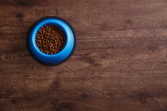 bowl of dry kibble dog food healthy pets feed