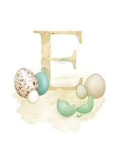 Letter E, Egg, Nature Alphabet Initial Nursery Art 8.5 x 11