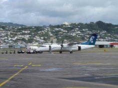 Flight from Chatham Islands CHT to Wellington WLG     Công ty Viettel IDC. Trụ sở chính. Địa chỉ: Tầng 5 nhà CIT, đường Duy Tân, phường Dịch Vọng Hậu, quận Cầu Giấy, Hà Nội