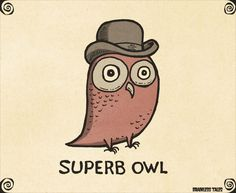 http://www.brainlesstales.com/images/2016/Feb/superb-owl.jpg